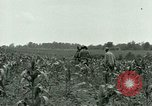 Image of Prisoner of War Camp Southern United States USA, 1944, second 16 stock footage video 65675021140