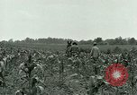 Image of Prisoner of War Camp Southern United States USA, 1944, second 17 stock footage video 65675021140
