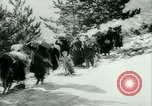 Image of Italian refugees evacuate Italy, 1944, second 35 stock footage video 65675021170