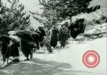 Image of Italian refugees evacuate Italy, 1944, second 36 stock footage video 65675021170