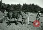 Image of German Prisoners of War France, 1944, second 51 stock footage video 65675021184
