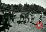 Image of German Prisoners of War France, 1944, second 53 stock footage video 65675021184