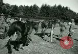 Image of German Prisoners of War France, 1944, second 54 stock footage video 65675021184