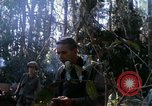 Image of Soldiers assault on hill South Vietnam, 1967, second 53 stock footage video 65675021187
