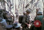 Image of Troops of US 503rd Airborne Infantry Regiment assault Hill 875 South Vietnam, 1967, second 19 stock footage video 65675021188
