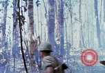 Image of Troops of US 503rd Airborne Infantry Regiment assault Hill 875 South Vietnam, 1967, second 45 stock footage video 65675021188