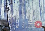 Image of Troops of US 503rd Airborne Infantry Regiment assault Hill 875 South Vietnam, 1967, second 47 stock footage video 65675021188