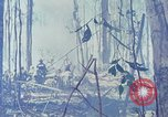 Image of Troops of US 503rd Airborne Infantry Regiment assault Hill 875 South Vietnam, 1967, second 52 stock footage video 65675021188