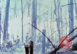 Image of Troops of US 503rd Airborne Infantry Regiment assault Hill 875 South Vietnam, 1967, second 61 stock footage video 65675021188