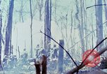 Image of Troops of US 503rd Airborne Infantry Regiment assault Hill 875 South Vietnam, 1967, second 62 stock footage video 65675021188