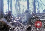 Image of Soldiers carry wounded South Vietnam, 1967, second 20 stock footage video 65675021189