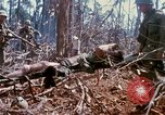 Image of Soldiers carry wounded South Vietnam, 1967, second 29 stock footage video 65675021189