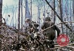 Image of Soldiers carry wounded South Vietnam, 1967, second 54 stock footage video 65675021189
