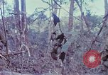 Image of Soldiers help injured South Vietnam, 1967, second 21 stock footage video 65675021190