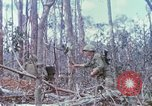 Image of Soldiers help injured South Vietnam, 1967, second 44 stock footage video 65675021190