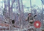 Image of Soldiers help injured South Vietnam, 1967, second 45 stock footage video 65675021190