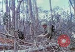 Image of Soldiers help injured South Vietnam, 1967, second 48 stock footage video 65675021190