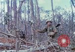 Image of Soldiers help injured South Vietnam, 1967, second 49 stock footage video 65675021190