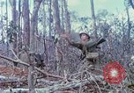 Image of Soldiers help injured South Vietnam, 1967, second 50 stock footage video 65675021190