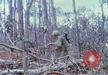 Image of Soldiers help injured South Vietnam, 1967, second 51 stock footage video 65675021190