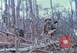 Image of Soldiers help injured South Vietnam, 1967, second 52 stock footage video 65675021190