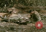 Image of wounded rescued by Huey helicopter South Vietnam, 1967, second 39 stock footage video 65675021192