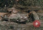 Image of wounded rescued by Huey helicopter South Vietnam, 1967, second 41 stock footage video 65675021192