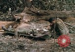 Image of wounded rescued by Huey helicopter South Vietnam, 1967, second 45 stock footage video 65675021192