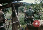 Image of US Army 11th Armored Cavalry Regiment search mission South Vietnam, 1967, second 13 stock footage video 65675021193