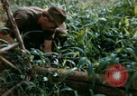 Image of US Army 11th Armored Cavalry Regiment search mission South Vietnam, 1967, second 18 stock footage video 65675021193