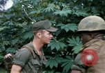 Image of US Army 11th Armored Cavalry Regiment search mission South Vietnam, 1967, second 35 stock footage video 65675021193