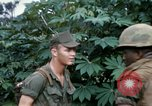 Image of US Army 11th Armored Cavalry Regiment search mission South Vietnam, 1967, second 36 stock footage video 65675021193