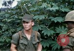 Image of US Army 11th Armored Cavalry Regiment search mission South Vietnam, 1967, second 37 stock footage video 65675021193