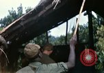 Image of US Army 11th Armored Cavalry Regiment search mission South Vietnam, 1967, second 47 stock footage video 65675021193