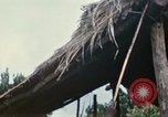 Image of US Army 11th Armored Cavalry Regiment search mission South Vietnam, 1967, second 49 stock footage video 65675021193