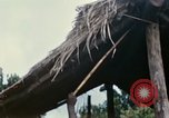 Image of US Army 11th Armored Cavalry Regiment search mission South Vietnam, 1967, second 51 stock footage video 65675021193