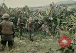 Image of US Army 11th Armored Cavalry Regiment search mission South Vietnam, 1967, second 61 stock footage video 65675021193
