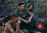 Image of 11th Armored Cavalry Regiment South Vietnam, 1967, second 35 stock footage video 65675021196