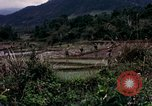 Image of 196th Light Infantry Brigade on mission Vietnam, 1968, second 23 stock footage video 65675021198