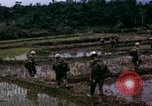 Image of 196th Light Infantry Brigade on mission Vietnam, 1968, second 38 stock footage video 65675021198