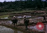 Image of 196th Light Infantry Brigade on mission Vietnam, 1968, second 39 stock footage video 65675021198