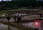 Image of 196th Light Infantry Brigade on mission Vietnam, 1968, second 40 stock footage video 65675021198