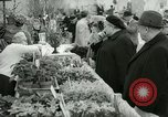 Image of 48th International Flower Show New York United States USA, 1965, second 44 stock footage video 65675021207