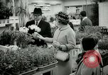 Image of 48th International Flower Show New York United States USA, 1965, second 49 stock footage video 65675021207