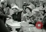 Image of 48th International Flower Show New York United States USA, 1965, second 52 stock footage video 65675021207