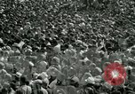 Image of American workers protest labor conditions United States USA, 1963, second 32 stock footage video 65675021237
