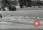 Image of a modern dairy Berea Kentucky United States USA, 1933, second 12 stock footage video 65675021250