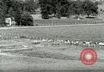 Image of a modern dairy Berea Kentucky United States USA, 1933, second 13 stock footage video 65675021250