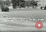 Image of a modern dairy Berea Kentucky United States USA, 1933, second 14 stock footage video 65675021250