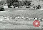Image of a modern dairy Berea Kentucky United States USA, 1933, second 15 stock footage video 65675021250
